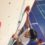 L'Association Sportive dans les starting blocks